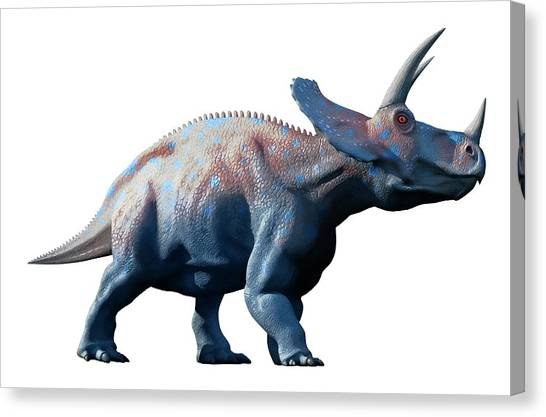 Triceratops Canvas Print - Triceratops Dinosaur by Mark Garlick