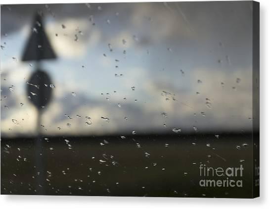 Trip And Rain Canvas Print