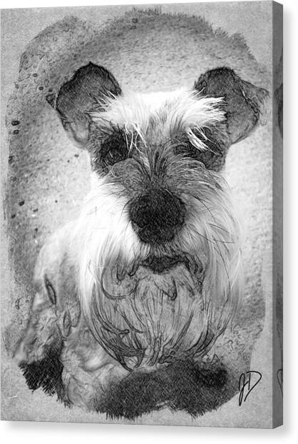 Trixie Canvas Print