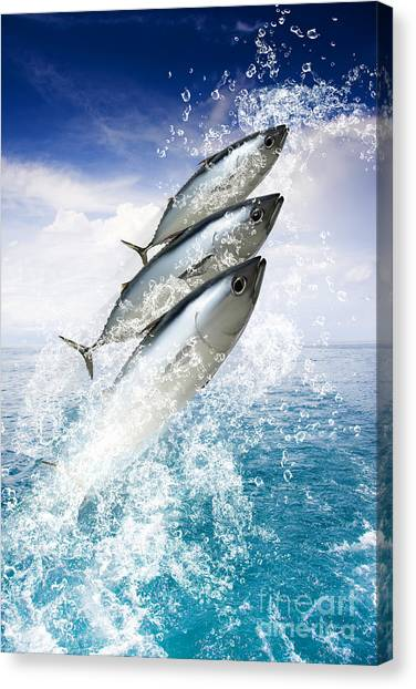 Angling Art Canvas Print - Tropical Sea Escape by Jorgo Photography - Wall Art Gallery