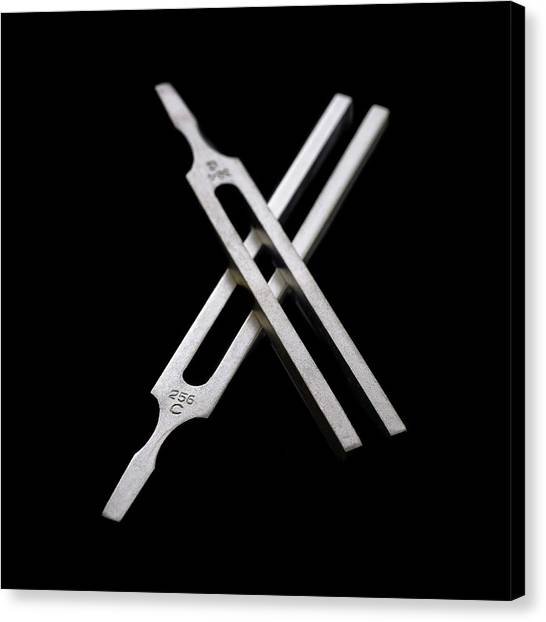 Reference Canvas Print - Tuning Forks by Science Photo Library