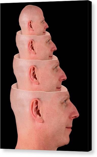 Unconscious Canvas Print - Unconscious Mind by Victor De Schwanberg/science Photo Library