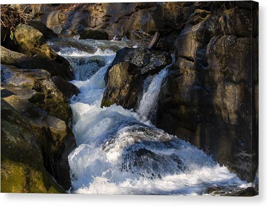 unnamed NC waterfall Canvas Print