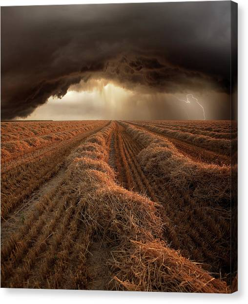 Storms Canvas Print - Untitled by Franz Schumacher