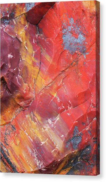 Petrified Forest Canvas Print - Usa, Arizona, Petrified Forest National by Jaynes Gallery