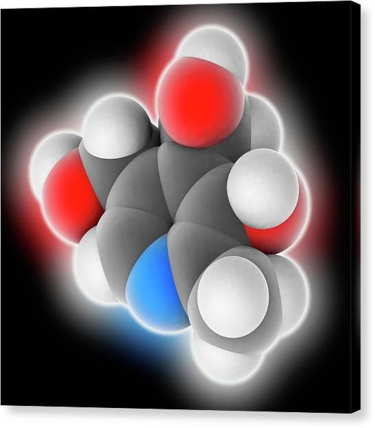 Biochemistry Canvas Print - Vitamin B6 Pyridoxine Molecule by Laguna Design