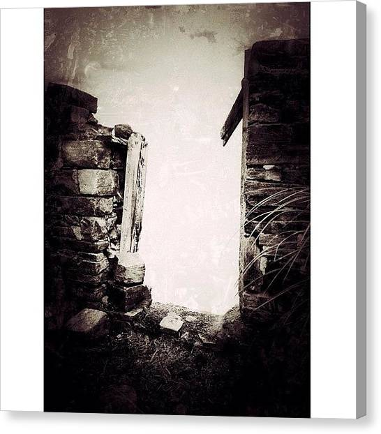 Rural Scenes Canvas Print - Walk To The Light by Natasha Marco