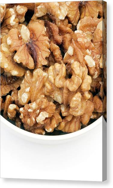 Walnuts Canvas Print by Geoff Kidd/science Photo Library