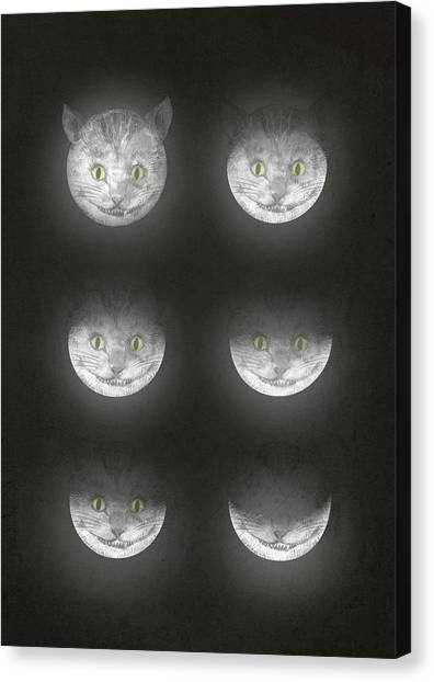 Moon Canvas Print - Waning Cheshire by Eric Fan