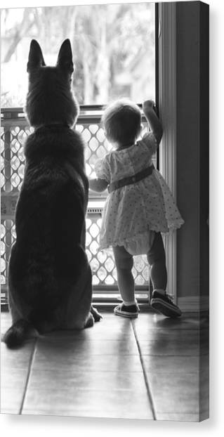 Watching The World Go By Canvas Print