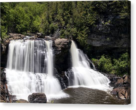 Waterfall 3 Canvas Print by David Lester