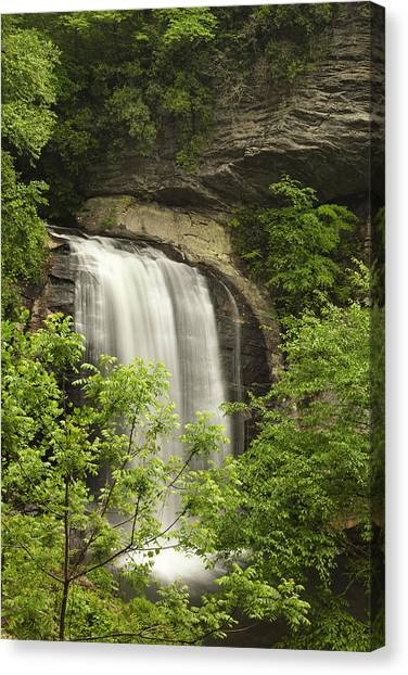 Pisgah National Forest Canvas Print - Waterfall In The Woods by Andrew Soundarajan