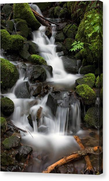 Waterfall Mount Rainier National Park Canvas Print