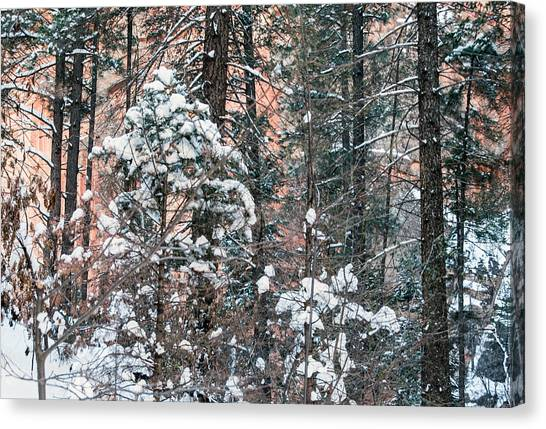 West Fork Snow Canvas Print