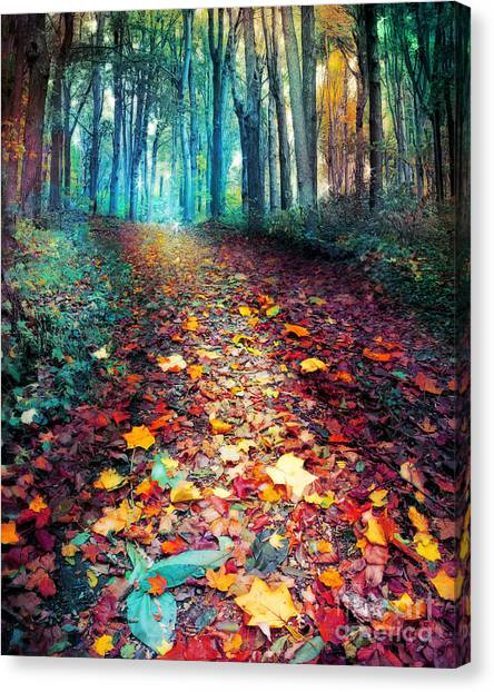 Where Leaves Gather Canvas Print