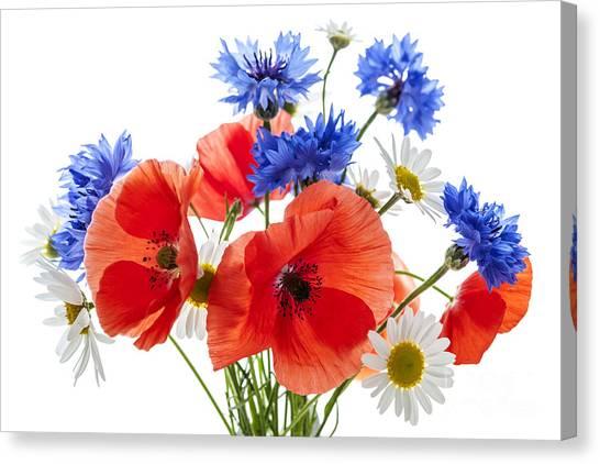 Cutout Canvas Print - Wildflower Bouquet by Elena Elisseeva