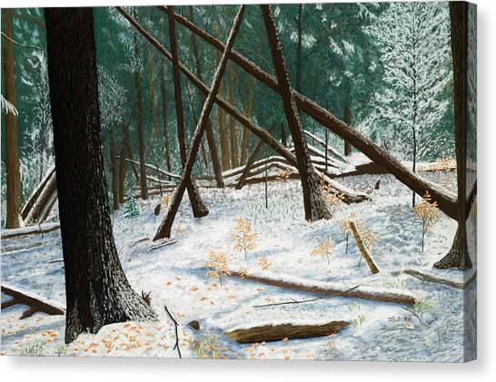 Windswept Woods Canvas Print
