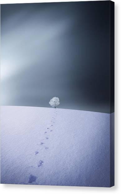 Calm Canvas Print - Winter by Bess Hamiti