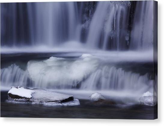 Winter Fall Canvas Print