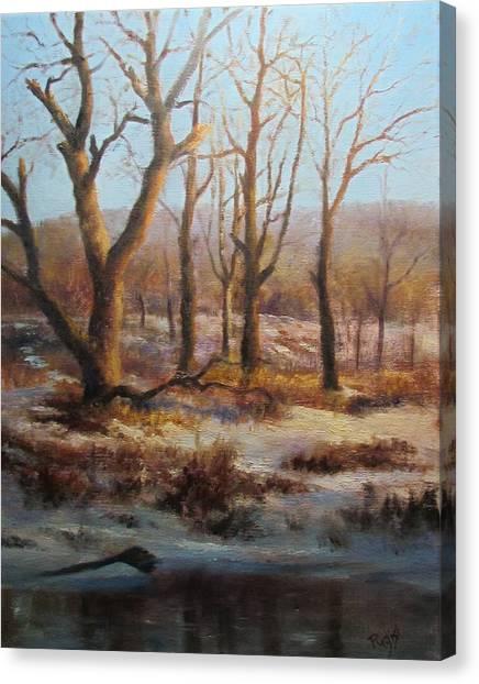 Winter Marsh And Beyond Canvas Print