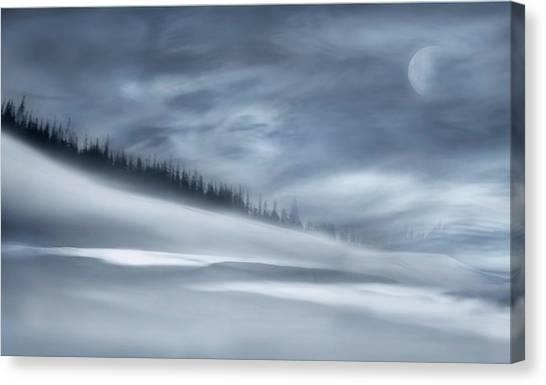 Winter Sky Canvas Print - Winter Night by Heidi Westum