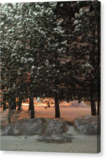 Winter Trees Canvas Print by Guy Ricketts