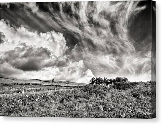 Written In The Wind Canvas Print