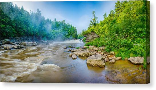 Swallows Canvas Print - Youghiogheny River A Wild And Scenic by Panoramic Images