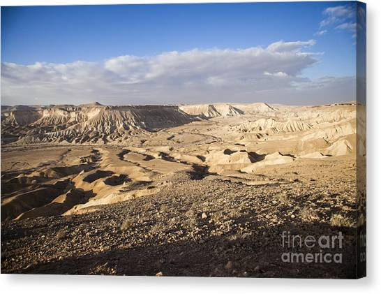 Negev Desert Canvas Print - Zin Valley Negev Desert Israel by Eyal Bartov