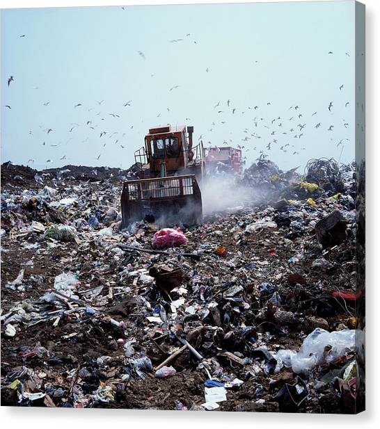 Bulldozers Canvas Print - Landfill Site by Robert Brook/science Photo Library