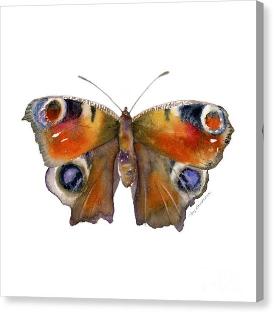 10 Peacock Butterfly Canvas Print