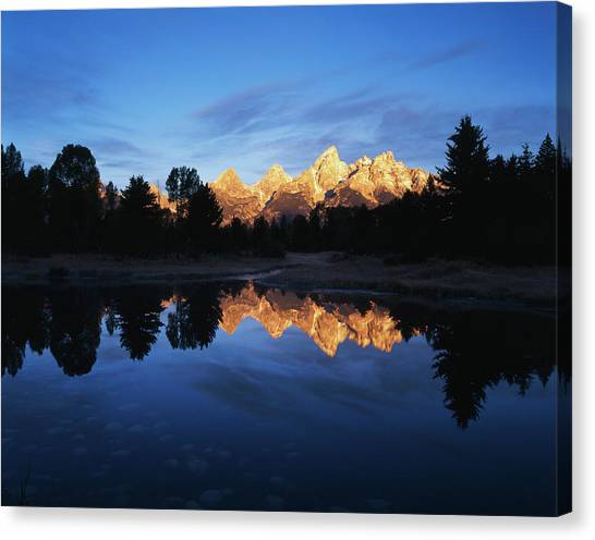 Beavers Canvas Print - Usa, Wyoming, Grand Teton National by Adam Jones