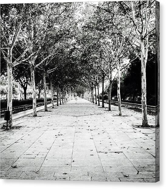 Roman Art Canvas Print - Sevilla Path by Gabriele Valeri