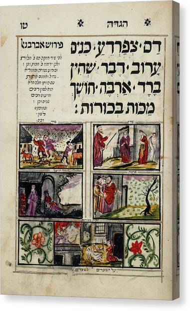 Grasshoppers Canvas Print - Passover Haggadah by British Library