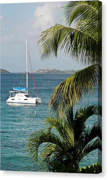 Catamarans Canvas Print - Usa, Usvi, St John by Trish Drury