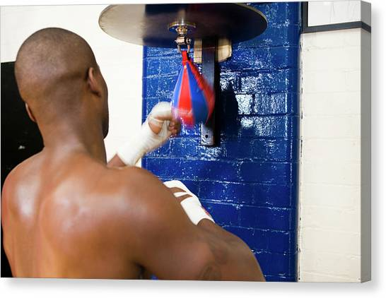 Fast Ball Canvas Print - Boxer Training by Gustoimages/science Photo Library