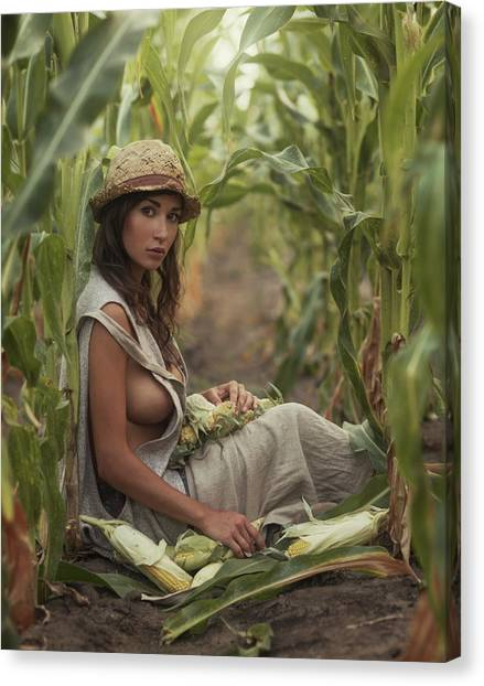 Corn Canvas Print - Untitled by David Dubnitskiy