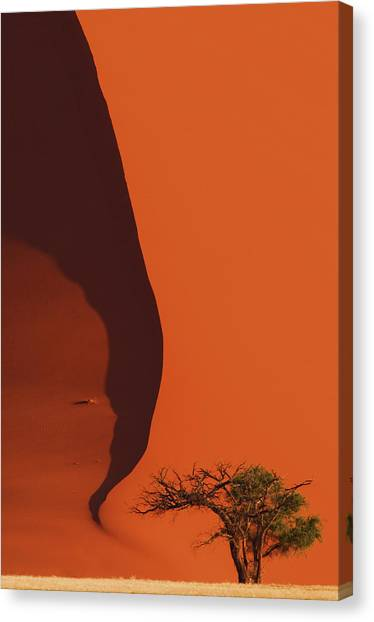 120118p072 Canvas Print