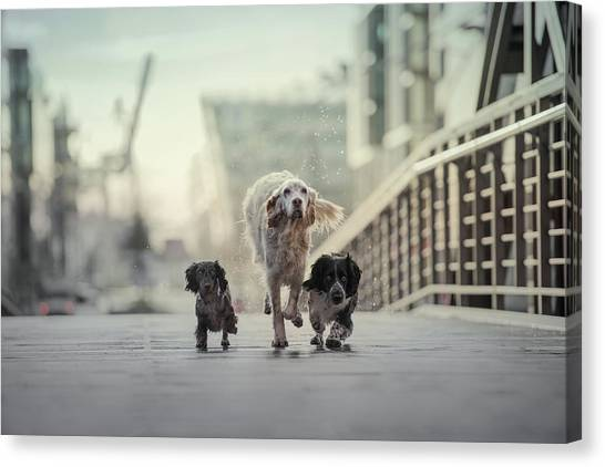 Industry Canvas Print - 1,2,3.....go! by Heike Willers