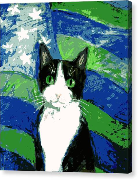 Cat With Stars And Stripes Canvas Print