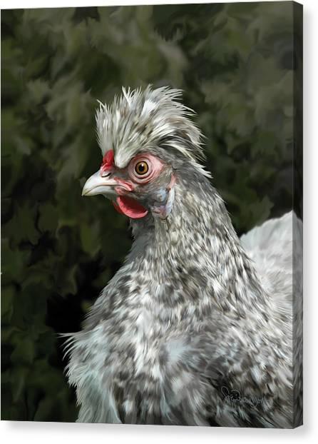 13. Cuckoo Hanno Canvas Print
