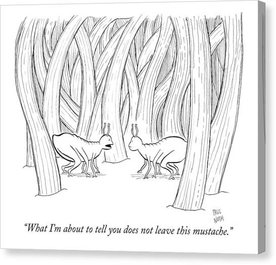 Fleas Canvas Print - What I'm About To Tell You Does Not Leave This by Paul Noth