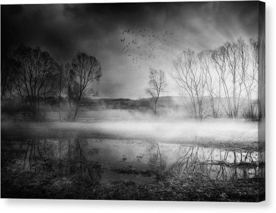 Atmosphere Canvas Print - Untitled by Stanislav Hricko
