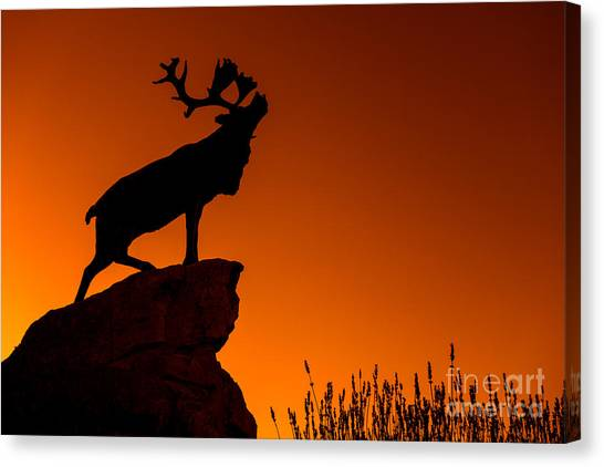 Hamels Canvas Print - 130918p141 by Arterra Picture Library