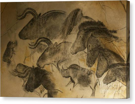 Prehistoric Canvas Print - 131018p051 by Arterra Picture Library