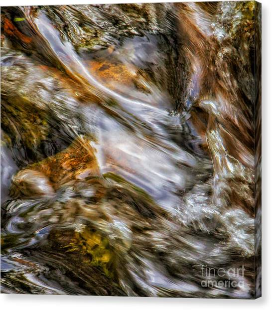Fine Art Nature Photography By Joanne Bartone Canvas Print