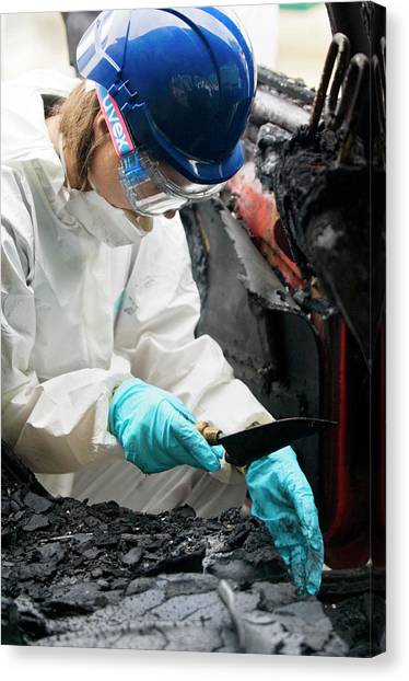 Forensics Training Canvas Print by Jim Varney/science Photo Library