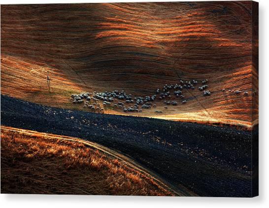 Farmers Canvas Print - Untitled by Massimo Della Latta