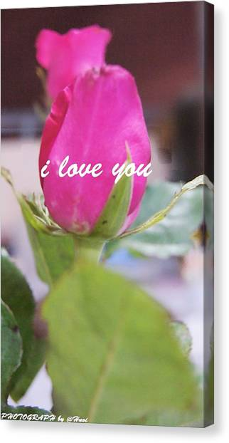Rose For You Canvas Print by Gornganogphatchara Kalapun