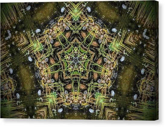 Kaleidoscope Canvas Print by Joe Oliver